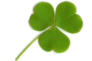 St. Patrick's Day Parade Shamrock