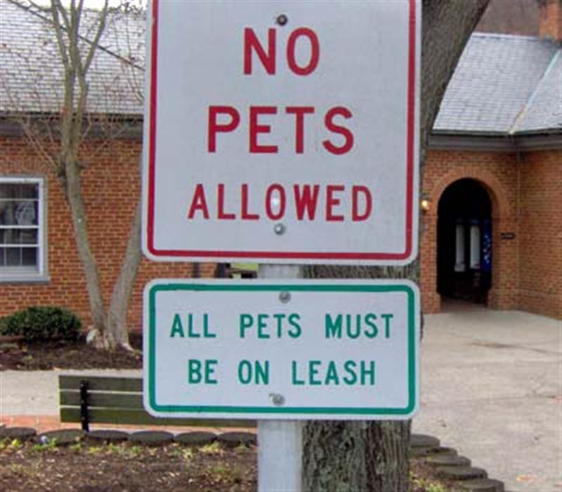 Funny signs 3 medium