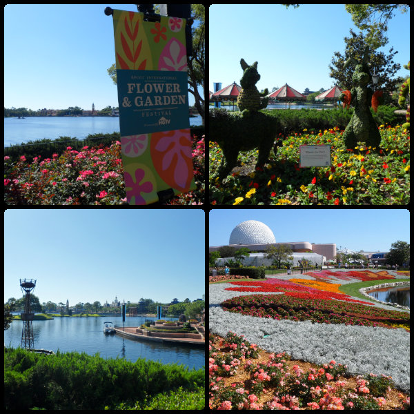 Epcot Flower &amp; Garden