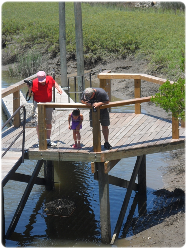 Seabrook Island Crabbing Dock