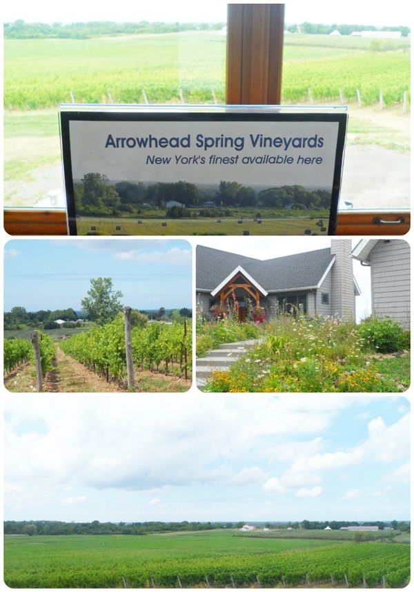 Arrowhead Spring Winery