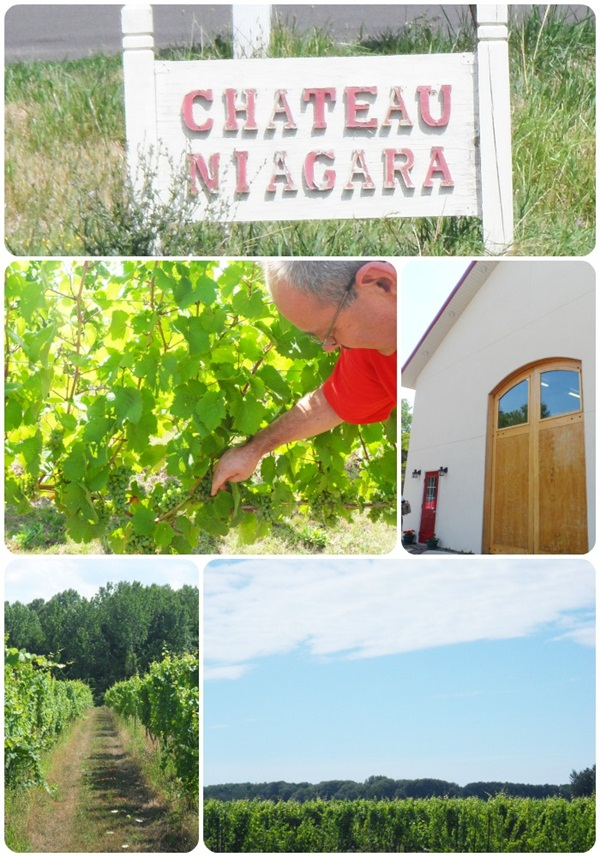 Chateau Niagara Winery
