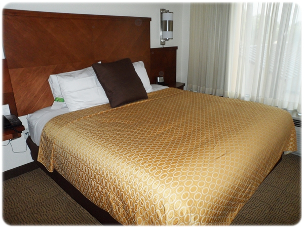 Hyatt Hotel Reviews