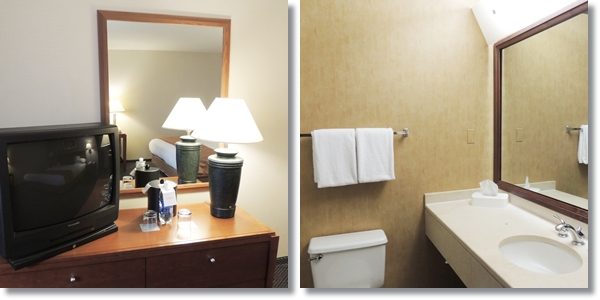 Hyatt Regency Cincinnati Bathroom