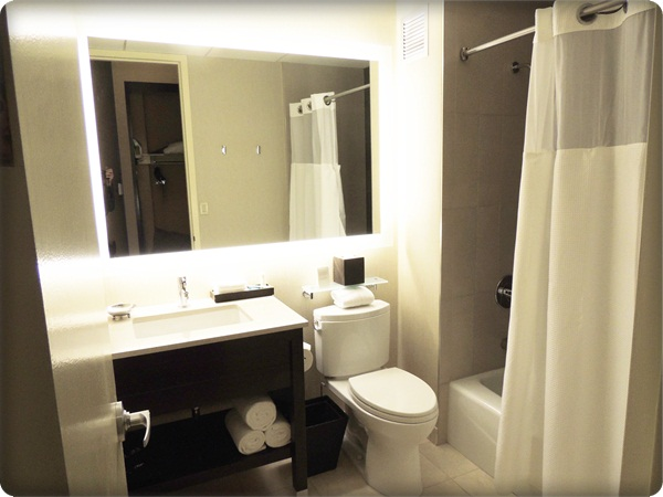 Hyatt Chicago Bathroom