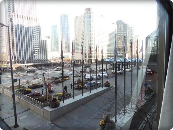 Hyatt Chicago Valet