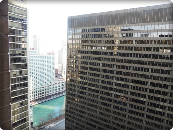 Hyatt Chicago View