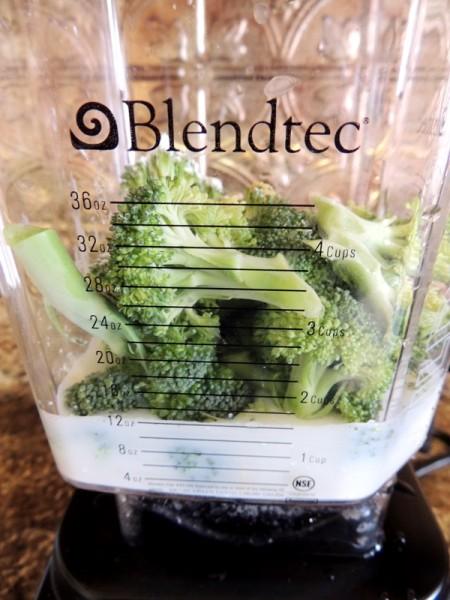 Blendtec Designer Series Soup