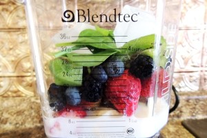 Blendtec Wildside Smoothie
