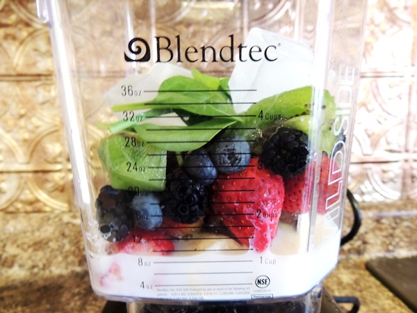 Blendtec Designer Series WildSide Blender Review