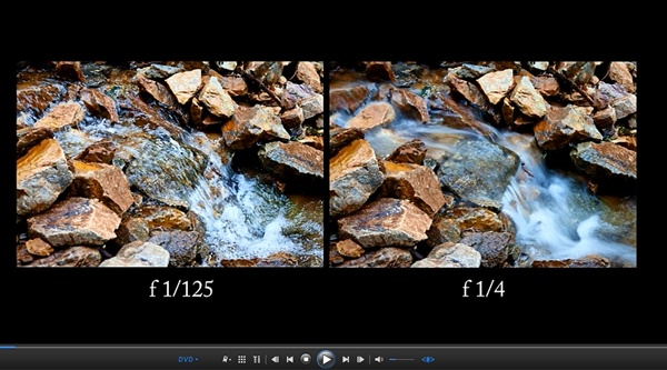 Digital Photography Tips and Tutorials for Beginners