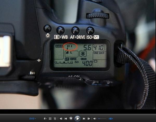Beginner's Guide To SLR Photography Shutter Speed