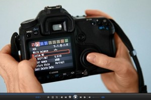 Beginner's Guide to SLR Photography Custom WB Featured