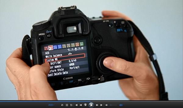Beginner's Guide to SLR Photography Custom WB