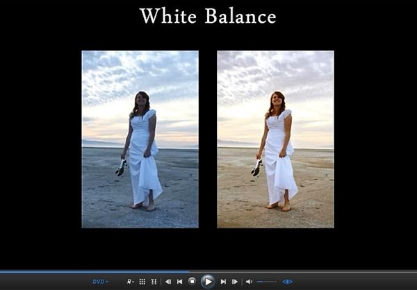 Beginner's Guide to SLR Photography White Balance