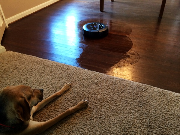 iRobot Scooba Floor Mopping Robot
