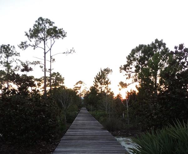 Casa Verde Boardwalk To Beach