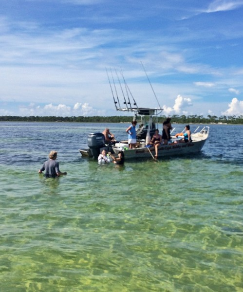 Gulf County Scalloping