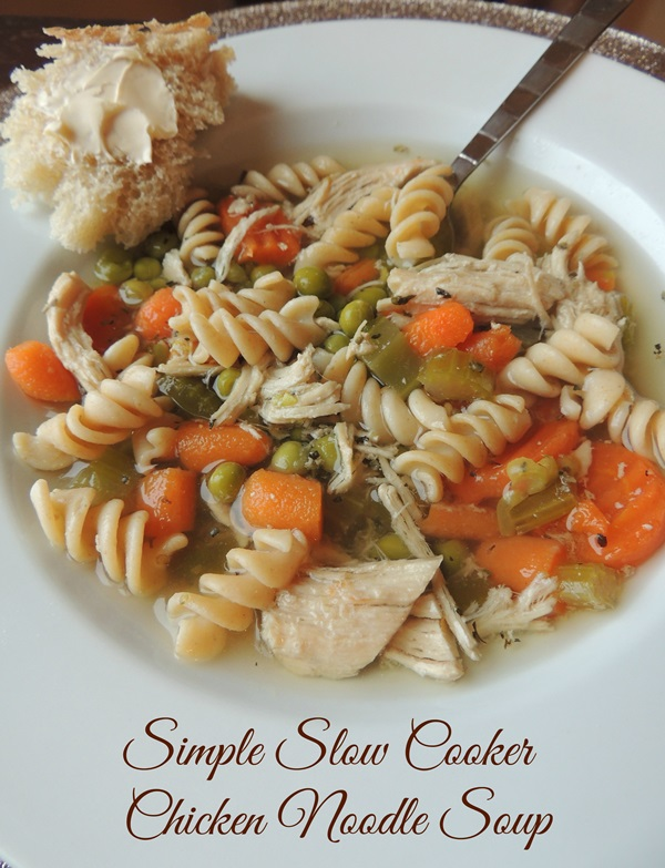 Simple Slow Cooker Chicken Noodle Soup Recipe