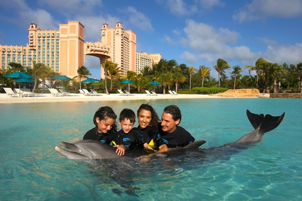 Bahamas Dolphin Cay Featured
