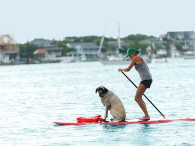 Wrightsville Beach SUP With Dog