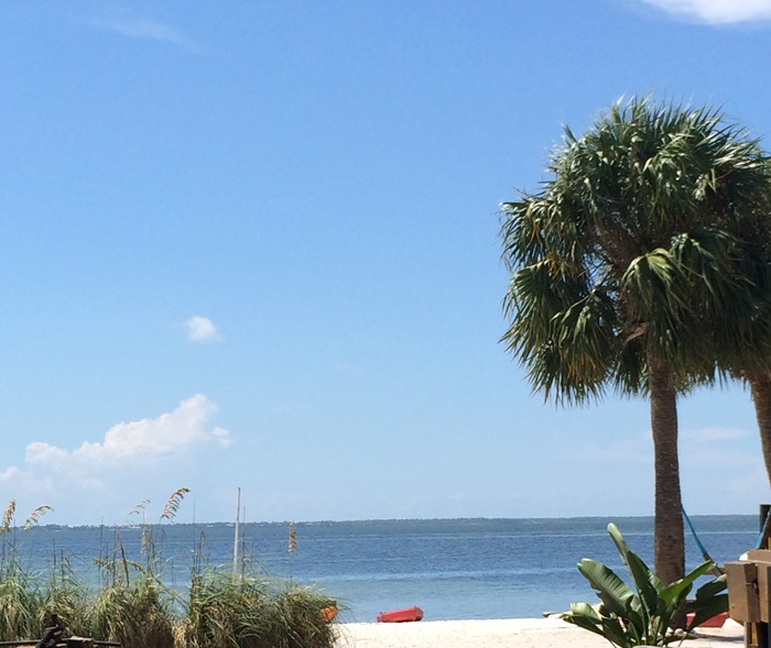 Gulf County Black's Island