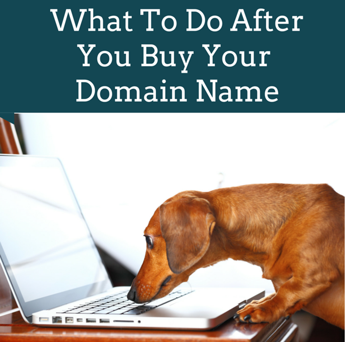 What To Do After You Buy Your Domain Name