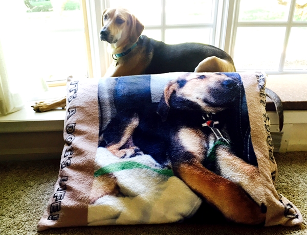 Spoil Your Pup With This Adorable Personalized Dog Bed