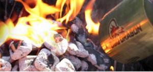 BBQ Dragon Fire