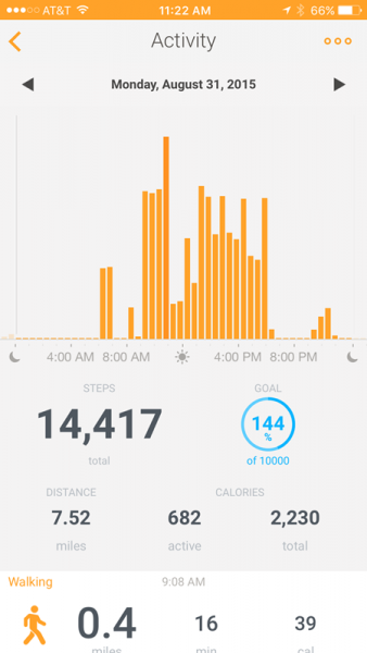 A whole lot of steps at Cedar Point!