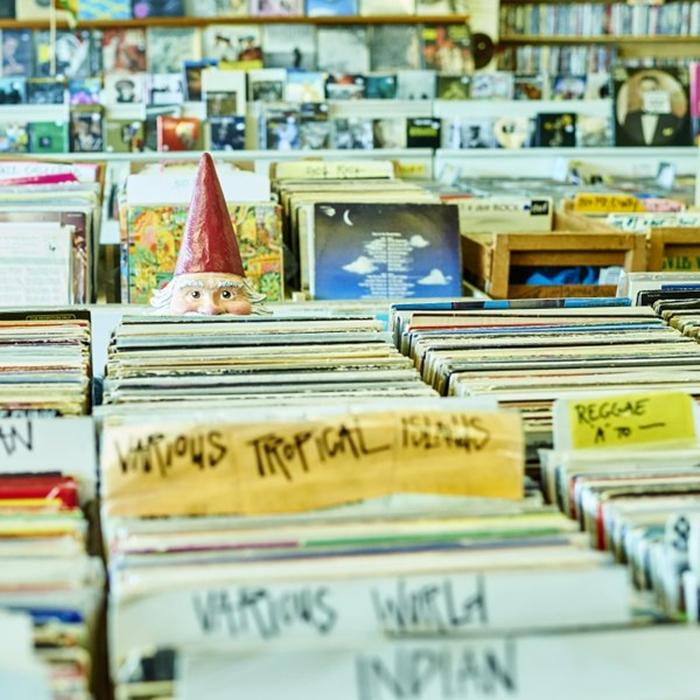 Roaming Gnome At Record Shop