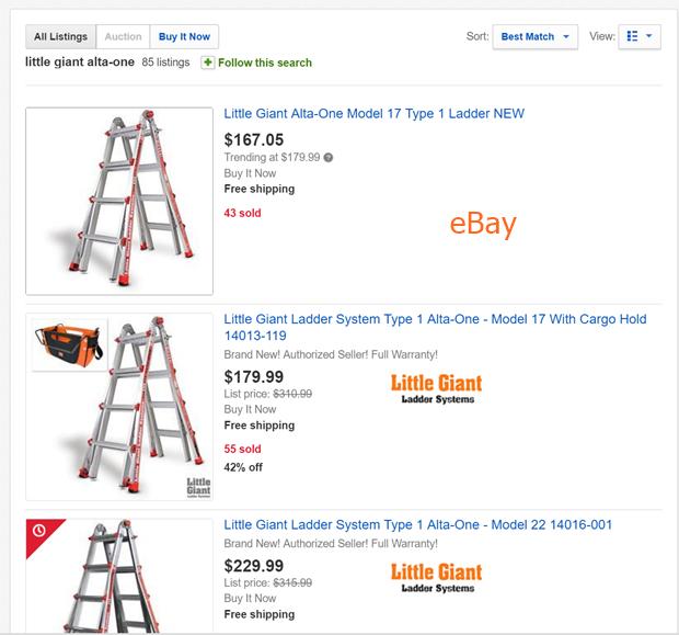 eBay Little Giant Ladder