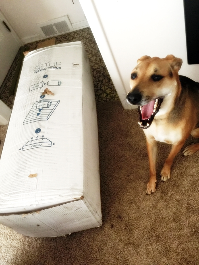 Layla Sleep Mattress In Box