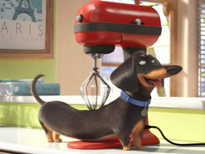 Secret Life Of Pets Featured