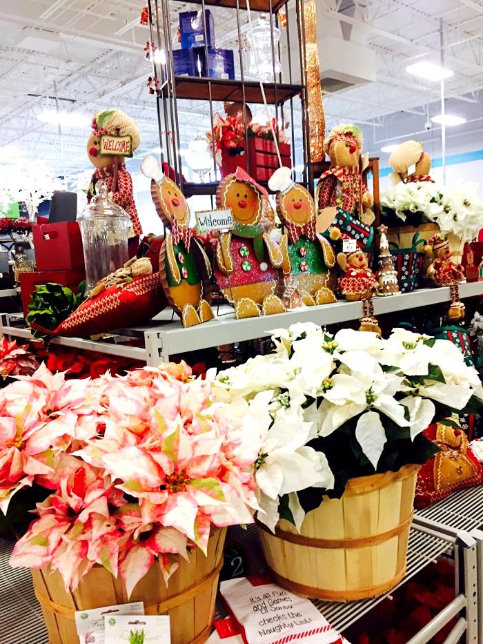 At Home Christmas Display