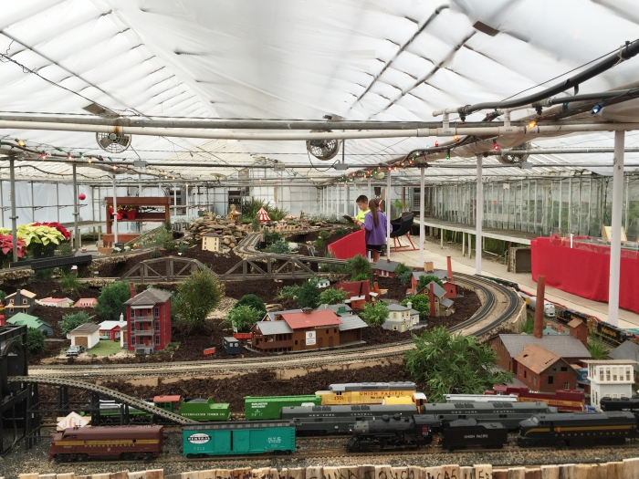 Puritas Nursery Holiday Train Display Overview