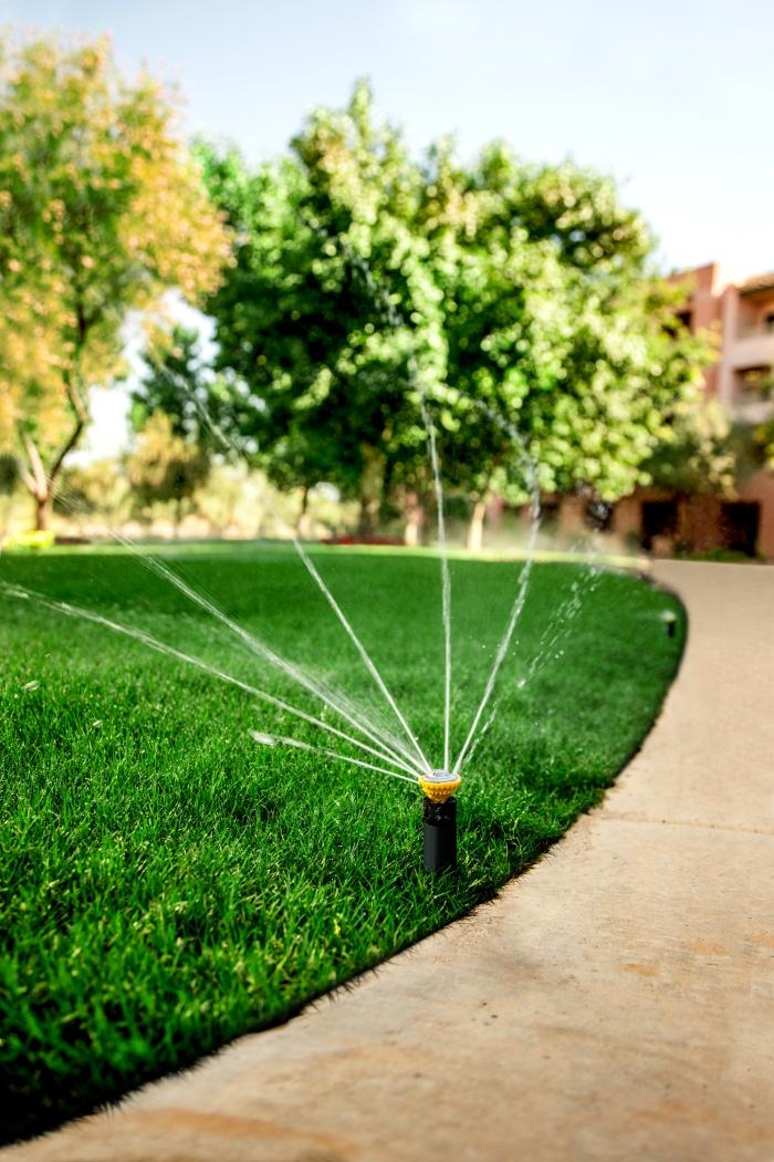 Rain Bird Sprinkler