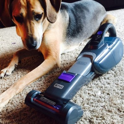 Black & Decker Pet 2 in 1 Cordless Vacuum