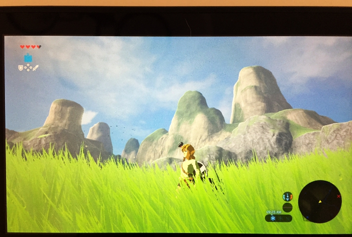 Nintendo Switch Zelda Field