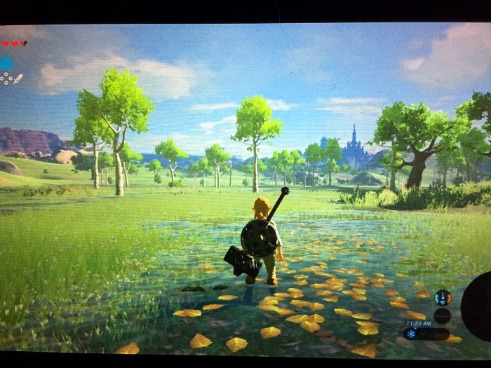 Nintendo Switch Zelda Fun