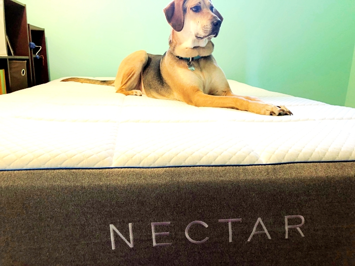 Nectar Mattress Review - 2 Wired 2 Tired Yoshi