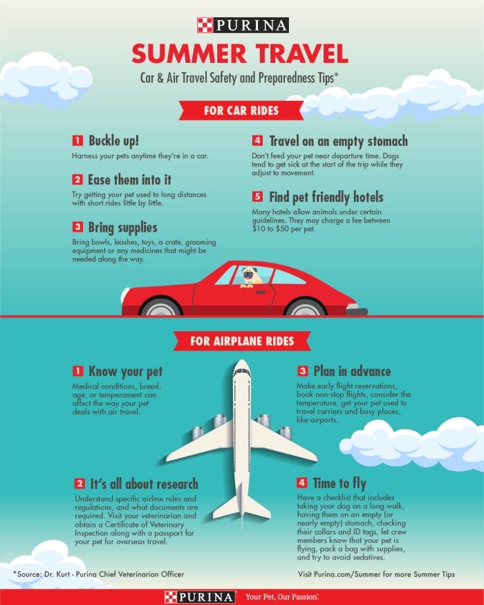 Summer Pet Safety Travel Tips