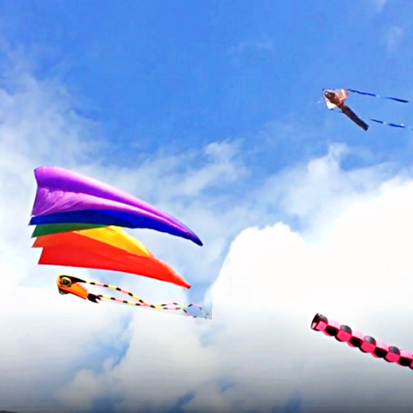 Detroit Kite Festival Family Fun Featured