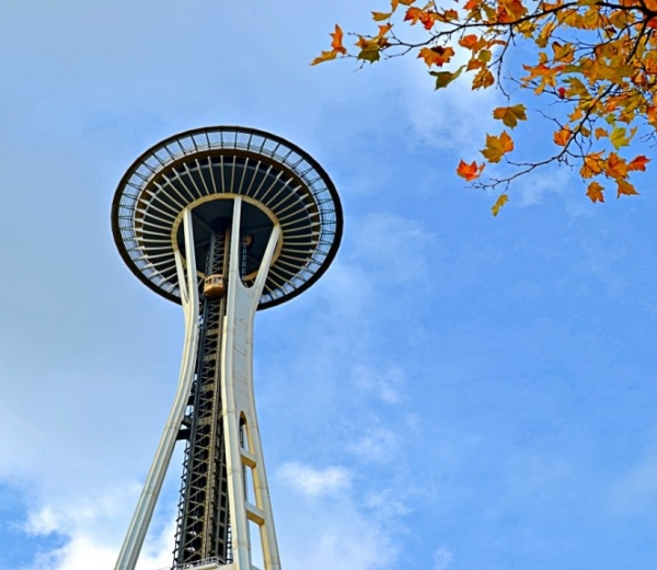 Fun Things To Do In Seattle For Families