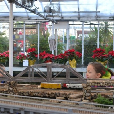 One Of Our Favorite Holiday Traditions: Puritas Nursery Holiday Train Display in Cleveland, Ohio
