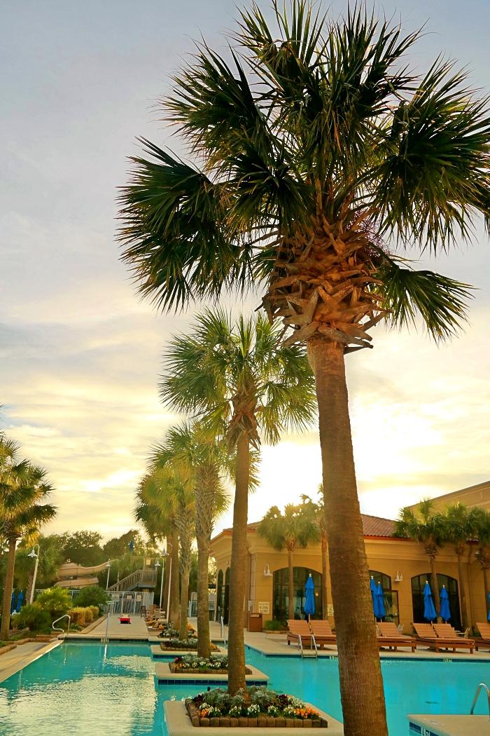 Myrtle Beach Marriott Grand Dunes Pool Palm Trees