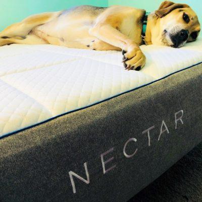 10 Reasons Why You Need A Nectar Sleep Mattress